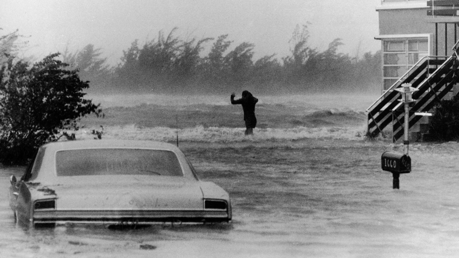 A black and white photo shows a submerged car and windblown trees as a distant figure braces against the wind.