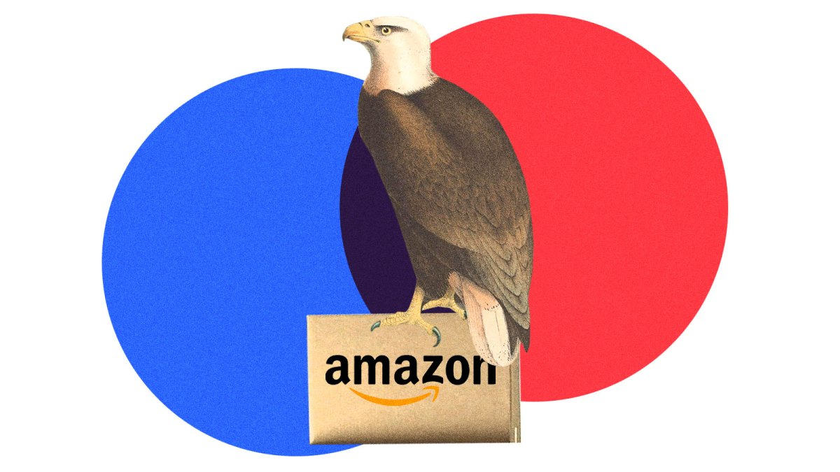 A bald eagle sitting on top of an Amazon package